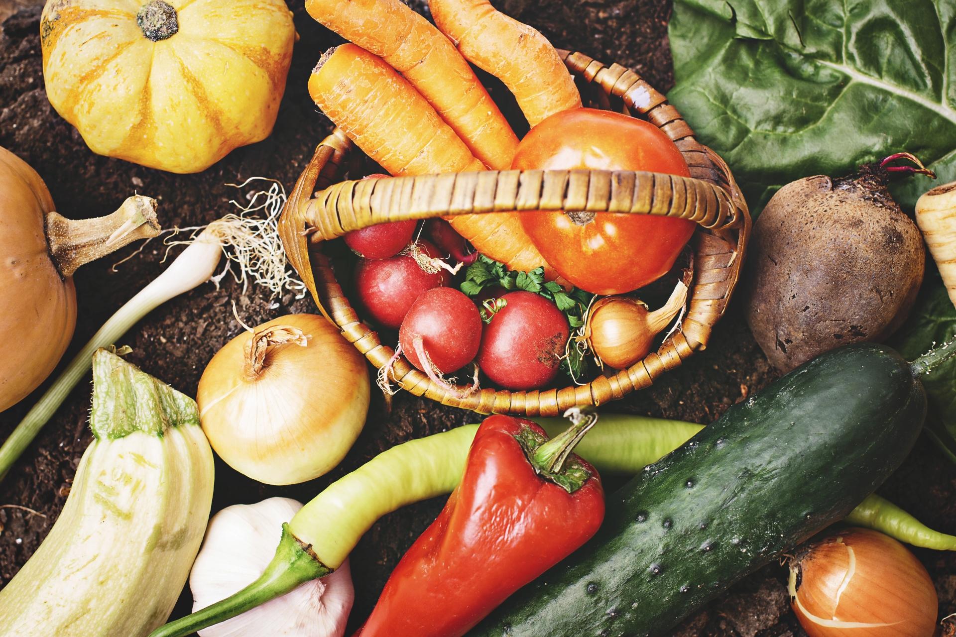 食べ物 ホルモン バランス 整える