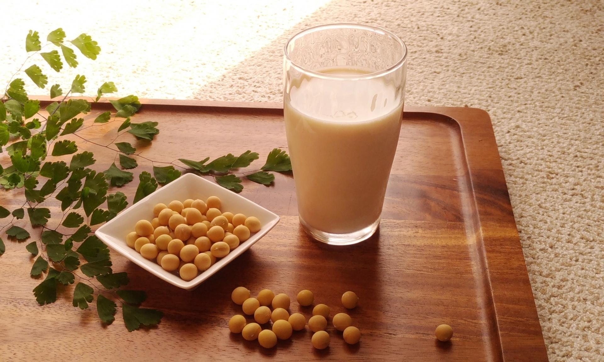 大豆と豆乳