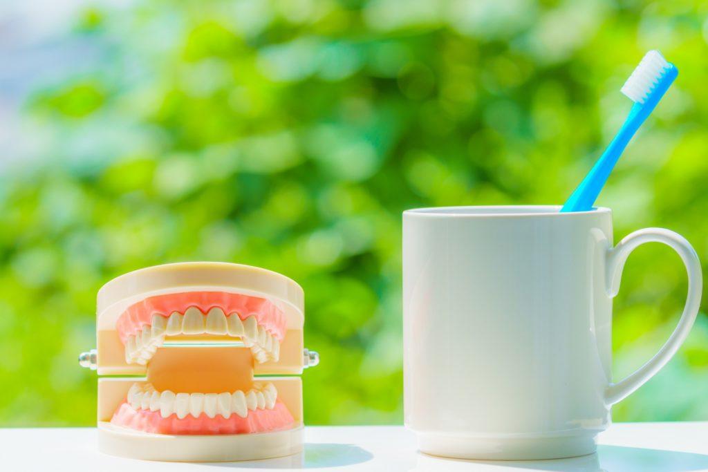 歯茎痩せを防ぐ