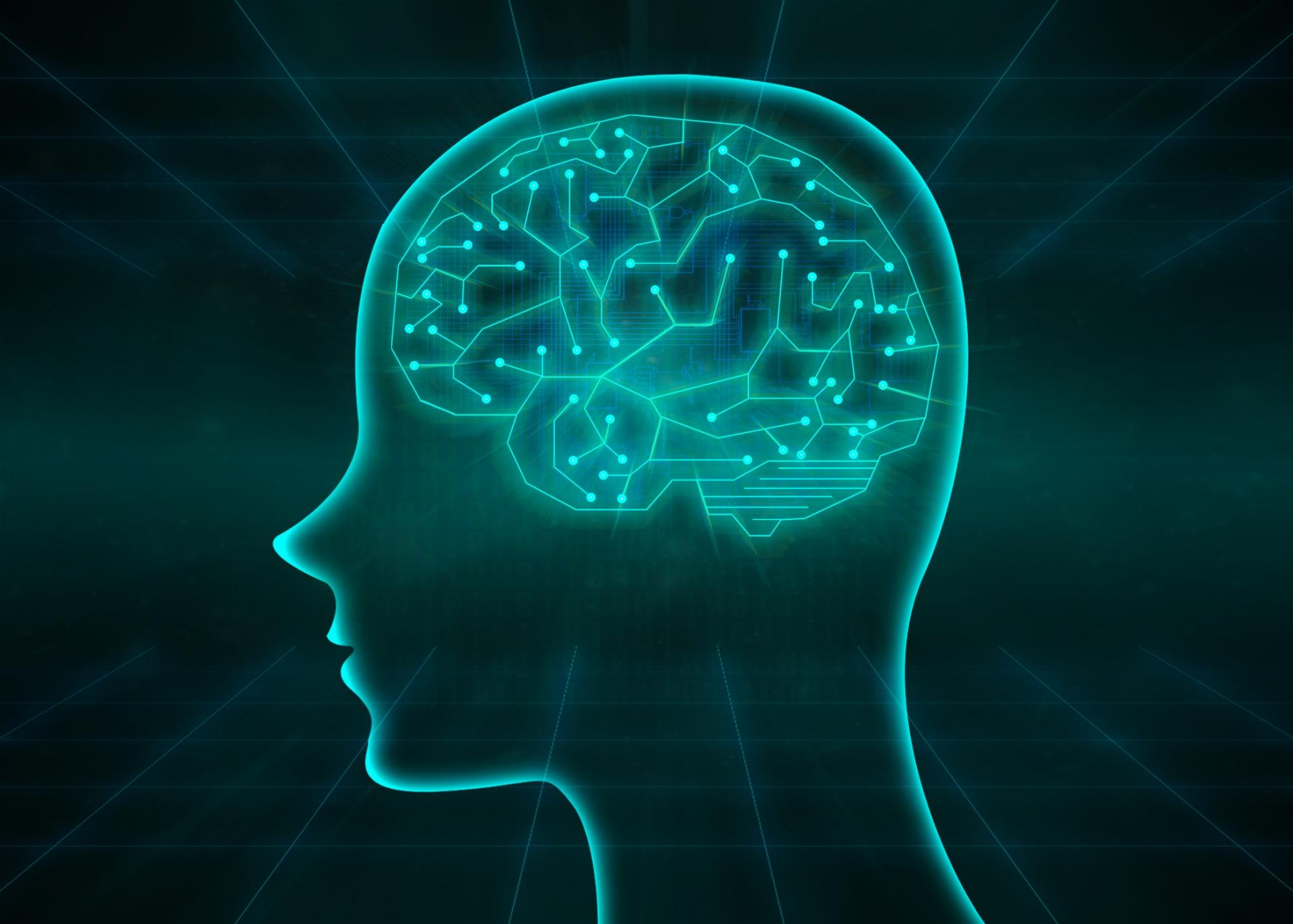 スマホ依存症の脳の回路