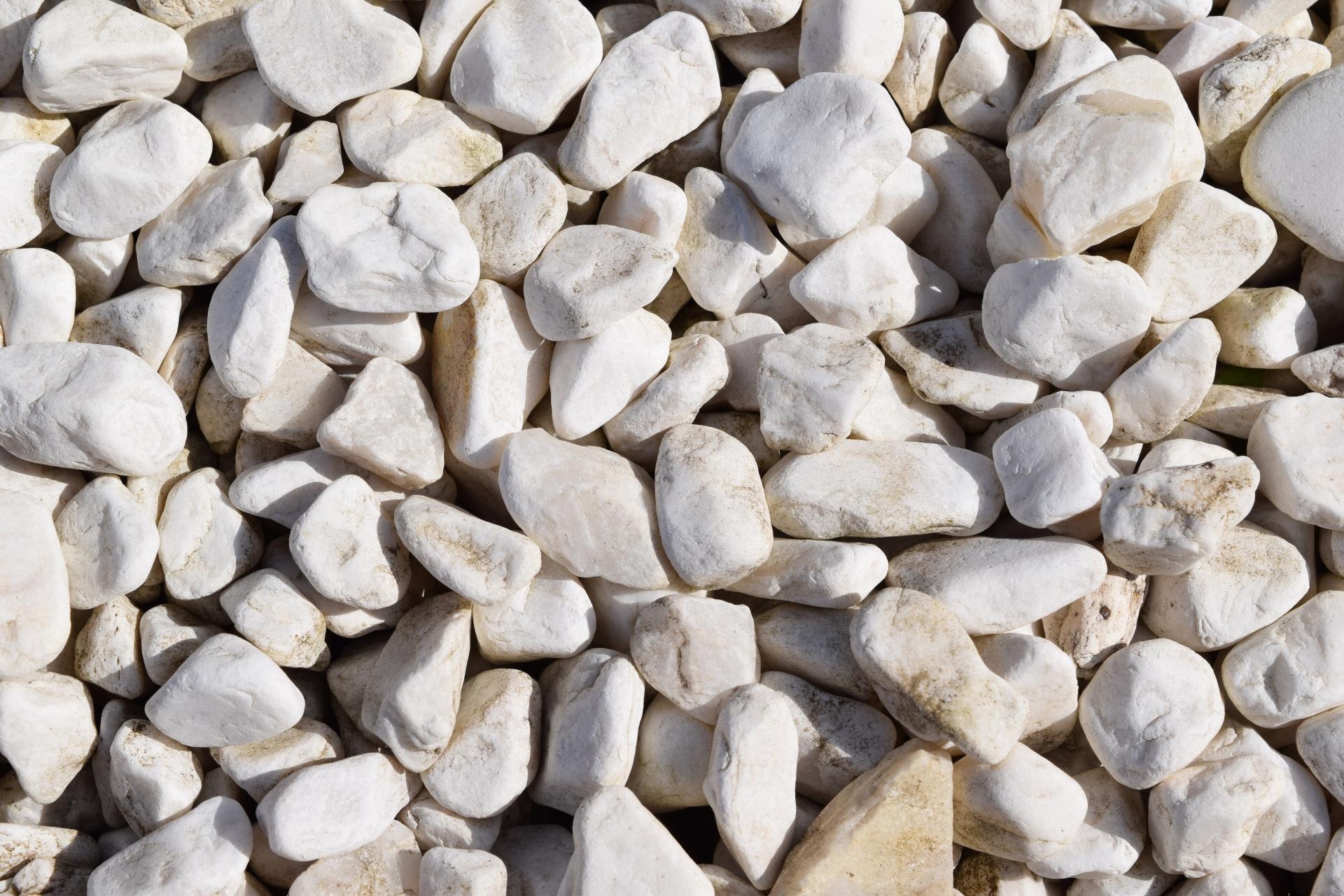 胆石のような石ころ