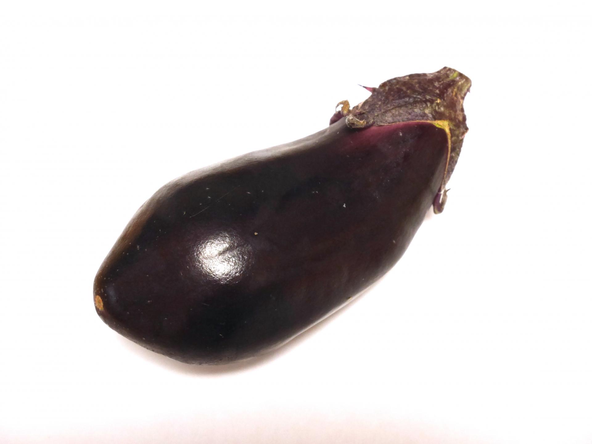 茄子のような形の胆嚢