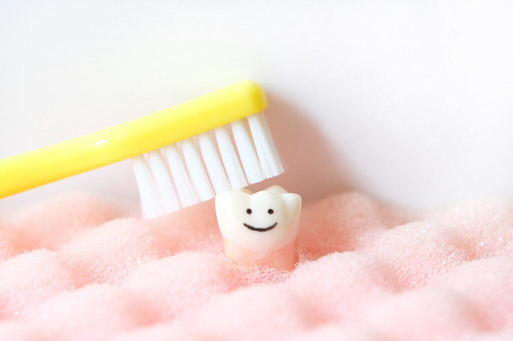 歯のケアで口腔トラブルを予防する