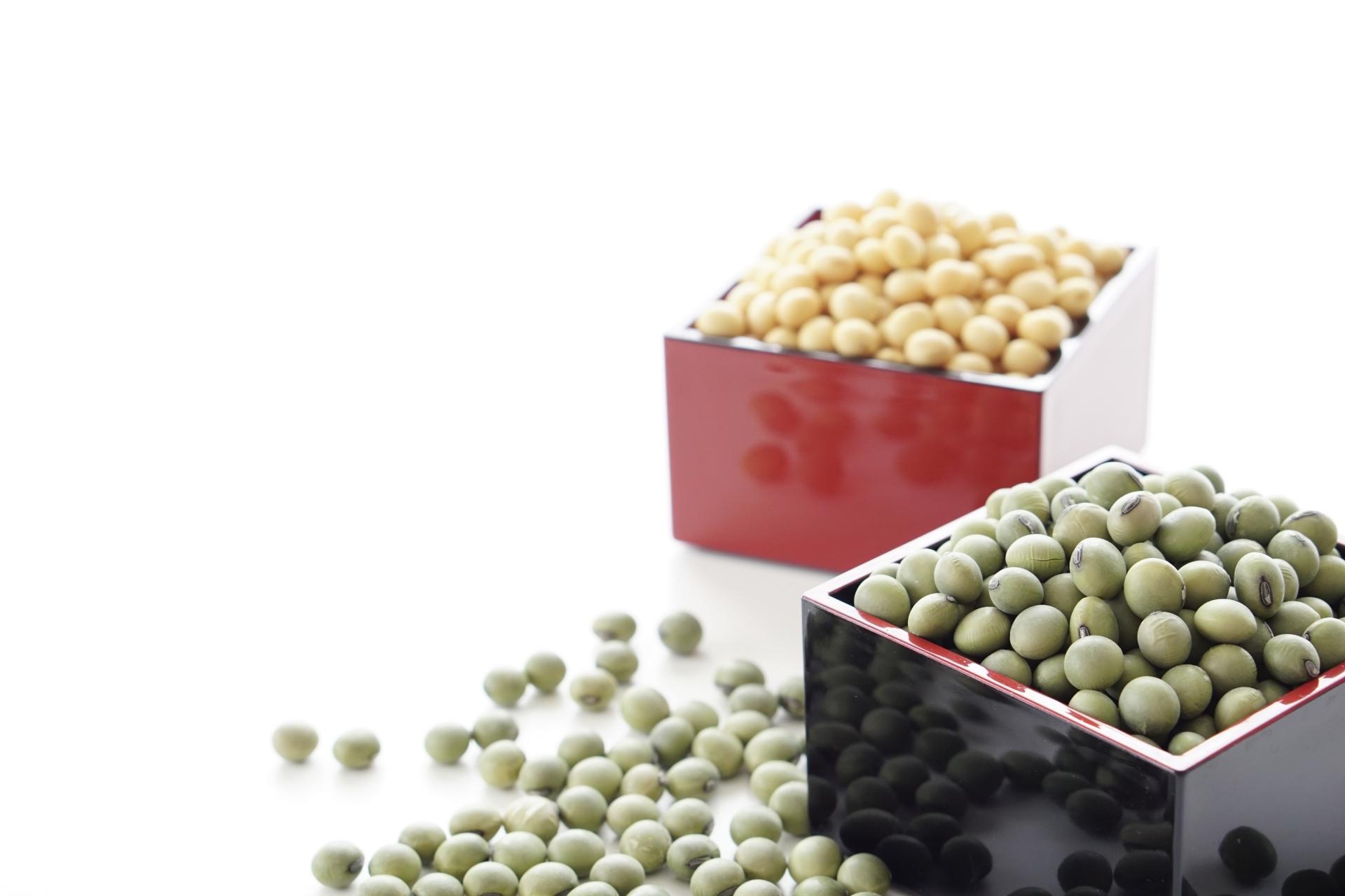 大豆と緑大豆