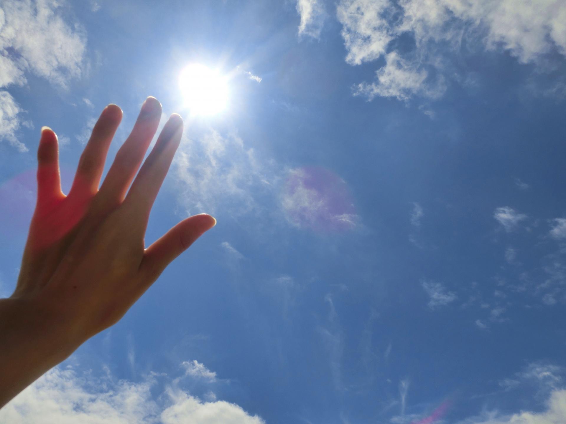 太陽 ビタミンd
