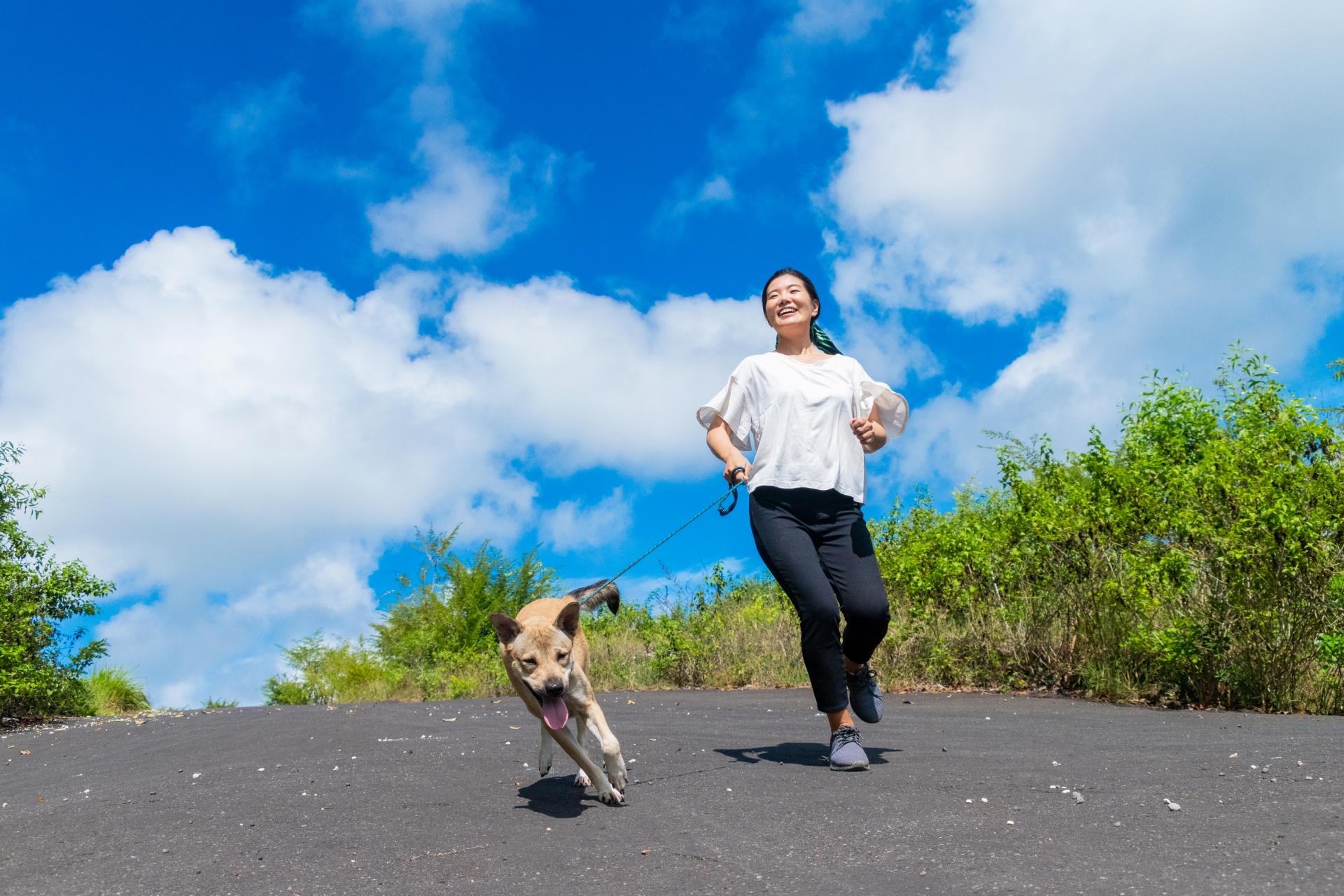 ウォーキングする女性と犬