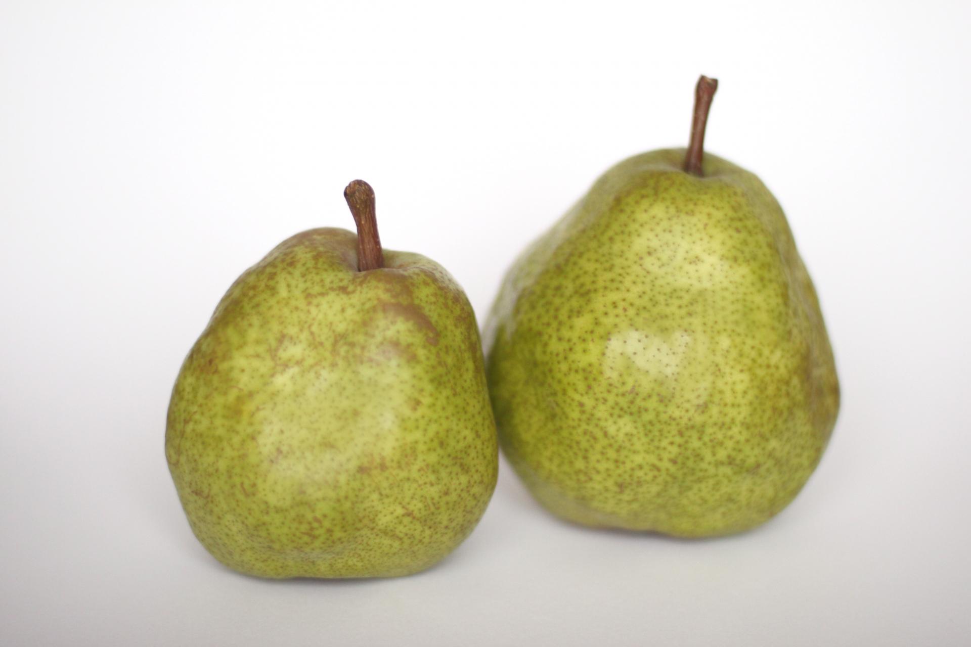 洋梨型肥満