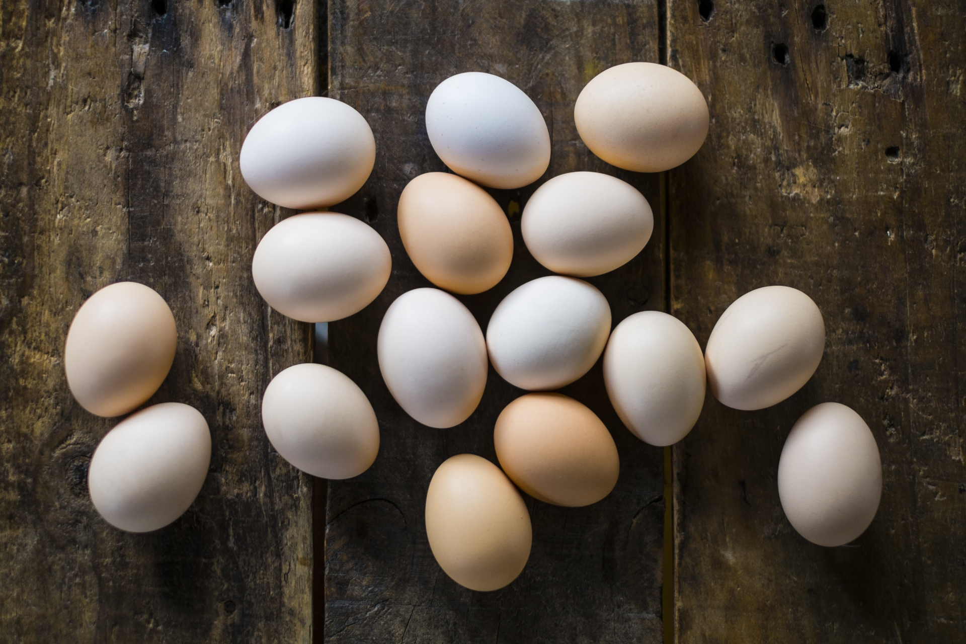早発卵巣機能不全 排卵イメージ