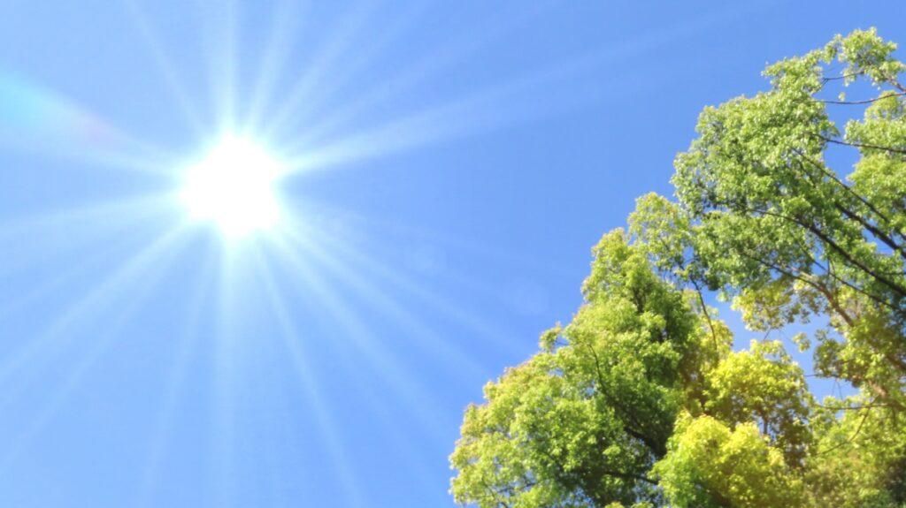 夏バテ 夏の厳しい日差し
