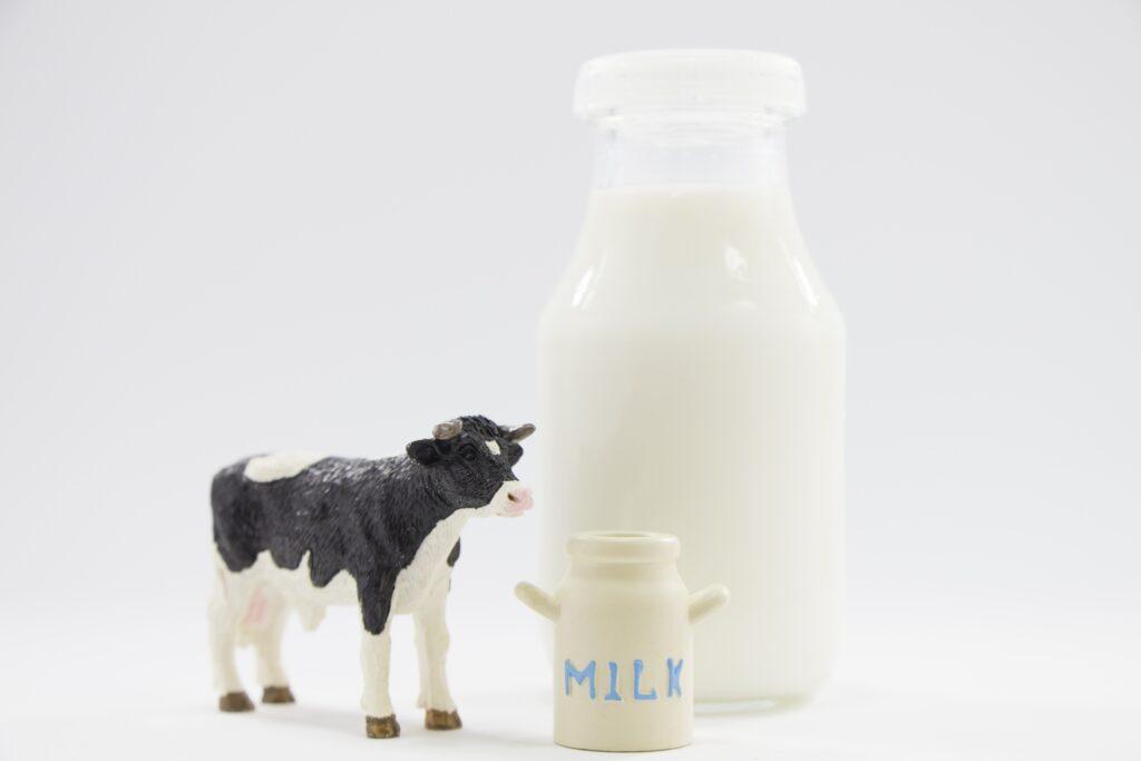 ホエイプロテイン 牛乳